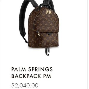 Handbags - Louis Vuitton Palm Springs back pack